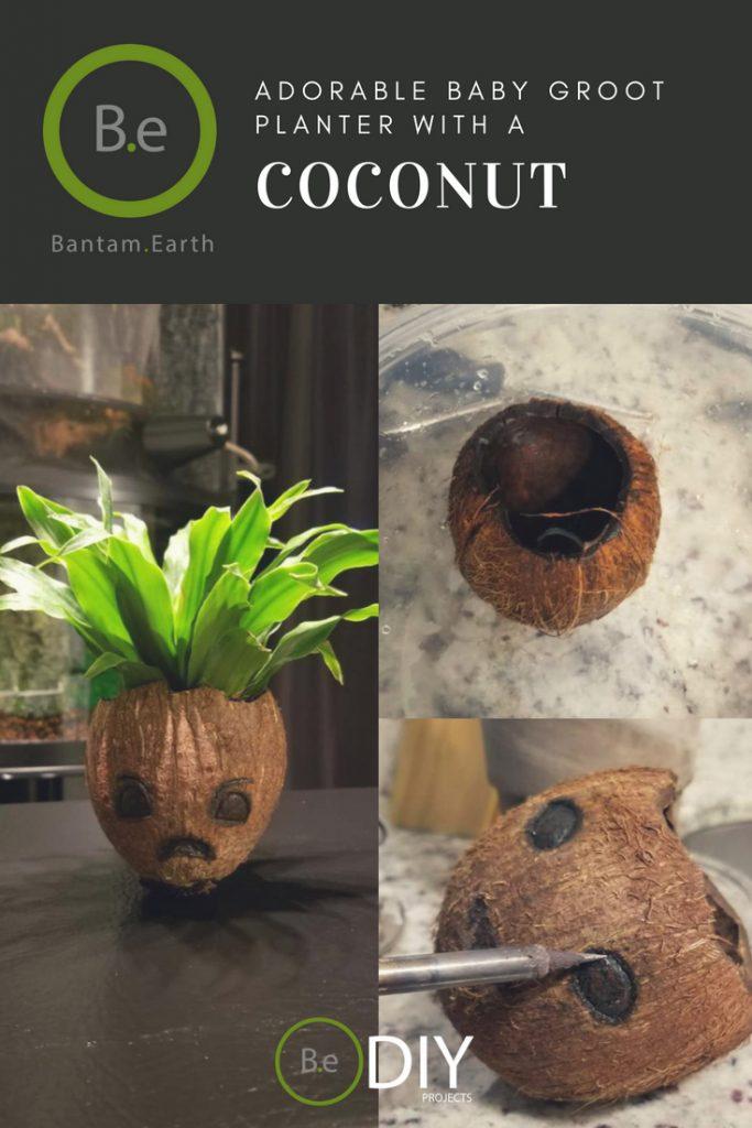 adorable baby groot coconut planter