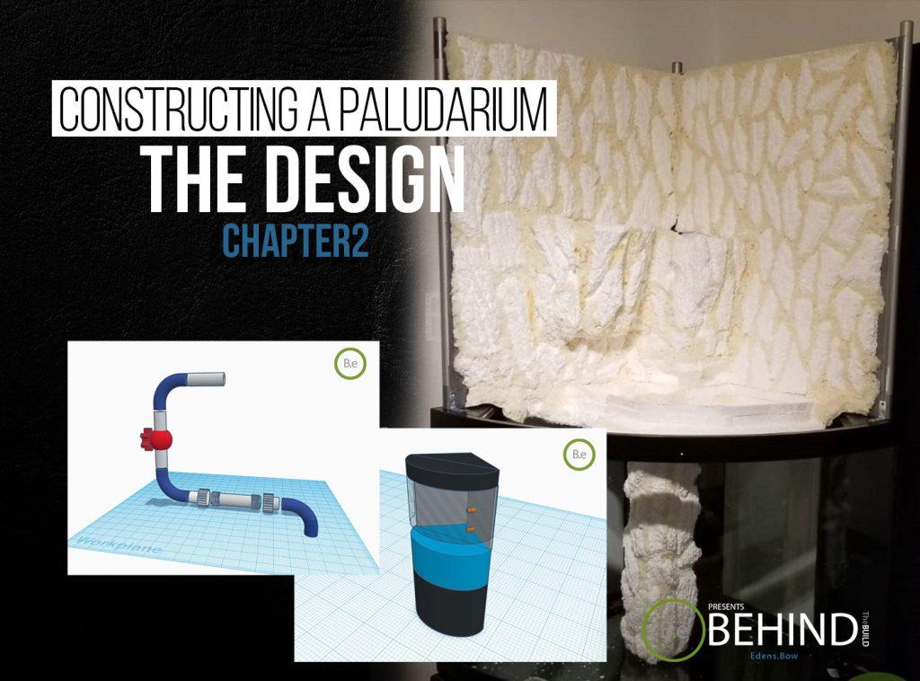BEHINDtheBUILD chapter 2 constructing a paludarium