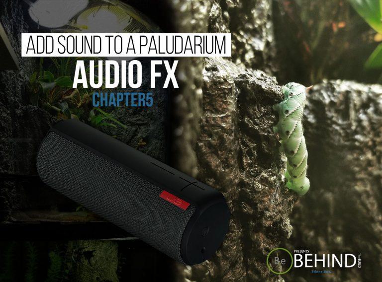 BEHINDtheBUILD chapter 5 add sound to a paludarium