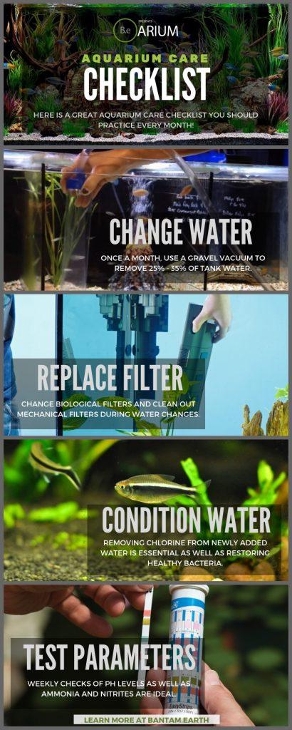 Aquarium Care Tips