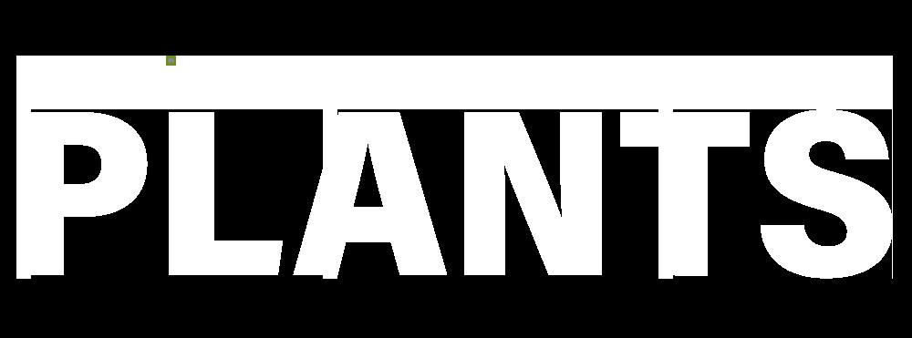 VIVARIUM PLANTS Logo