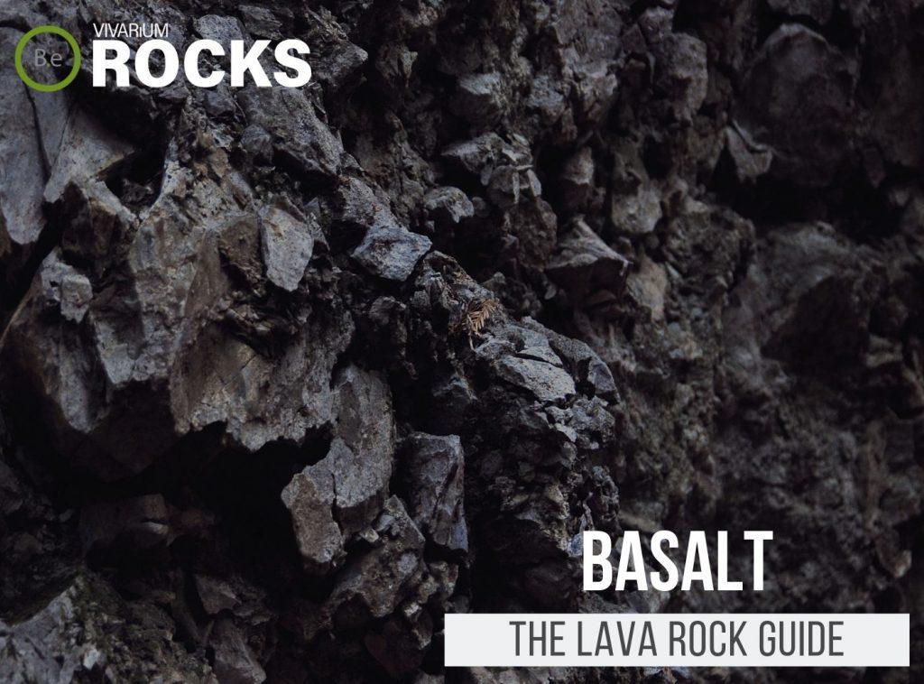 "Basalt ""Lava Rock"" Hardscape Guide"