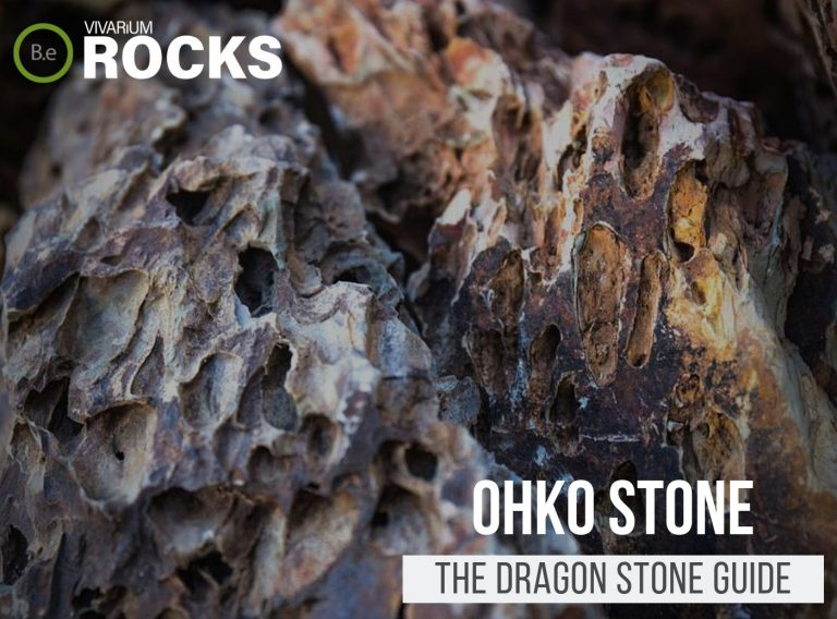 """Ohko Stone """"Dragon Stone"""" Hardscape Guide"""