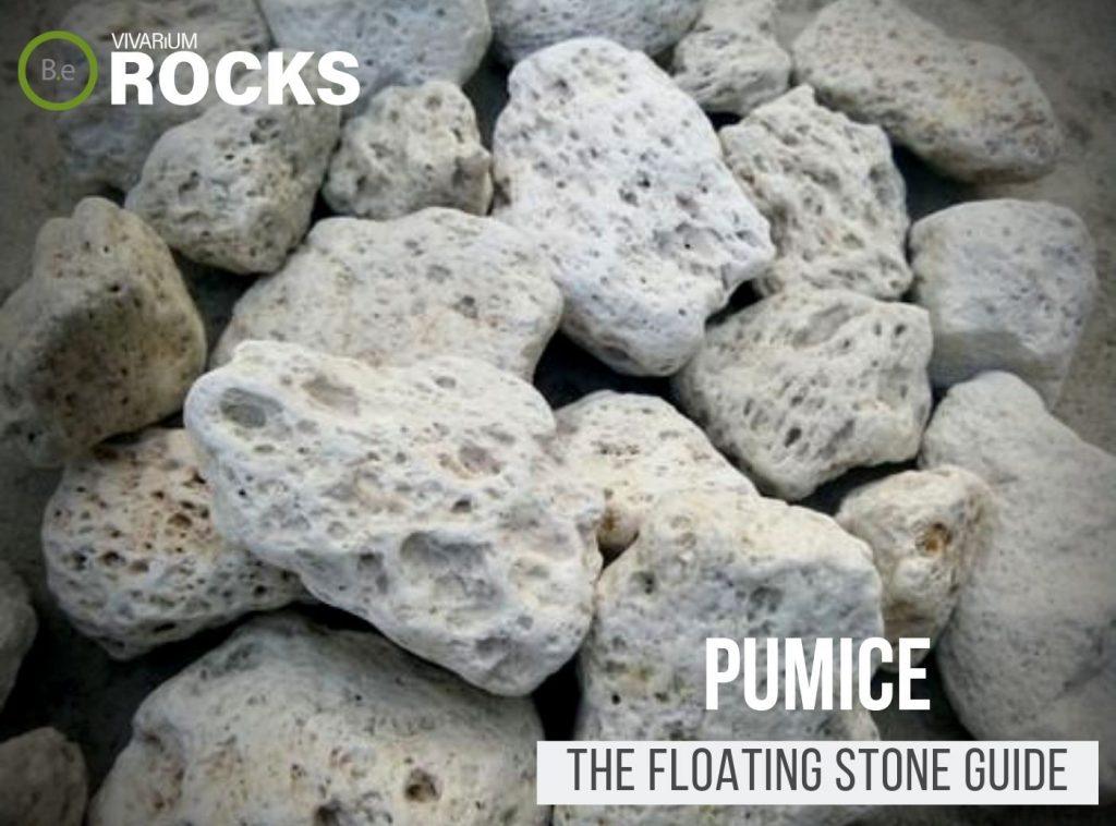 "Pumice Rock ""Floating Stone"" Hardscape Guide"