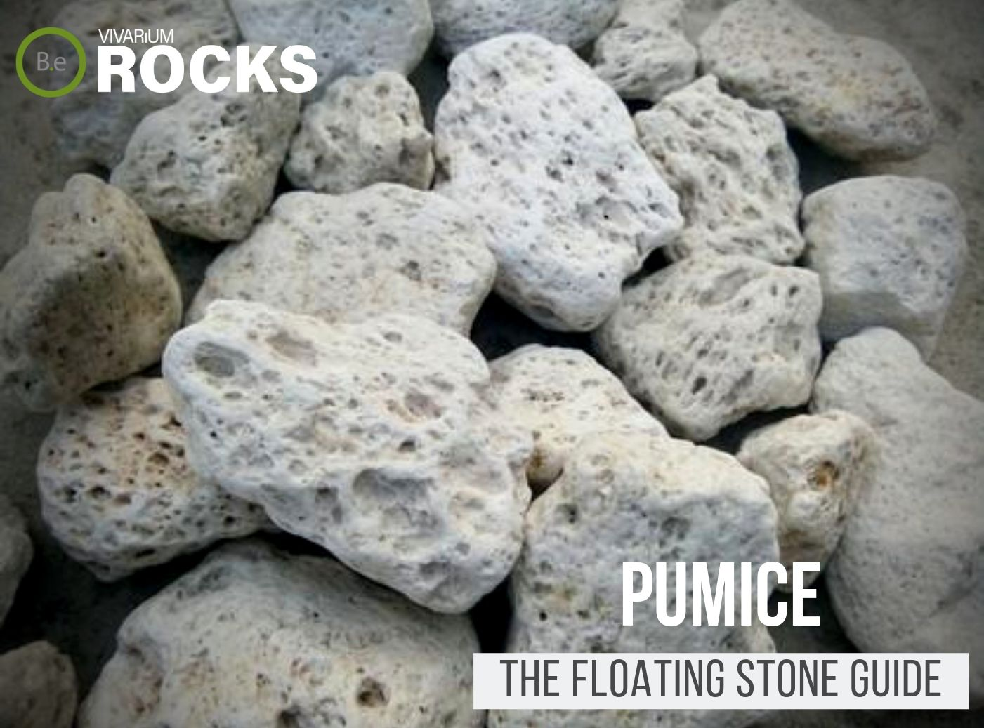 "Pumice Rock ""Floating Stone"" Hardscape Guide"