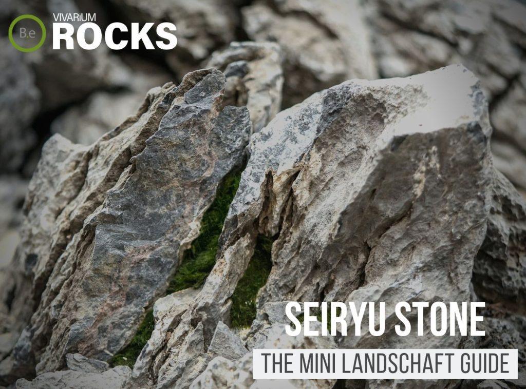 "Seiryu Stone ""Mini Landschaft"" Hardscape Guide"