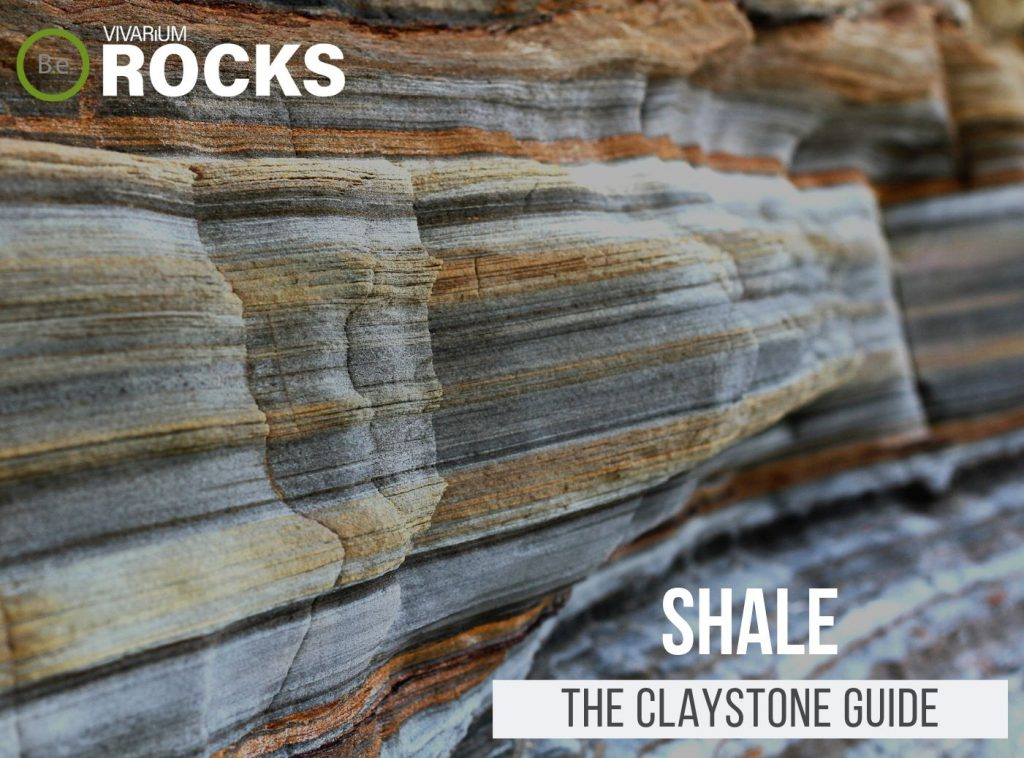"Shale ""Claystone"" Hardscape Guide"