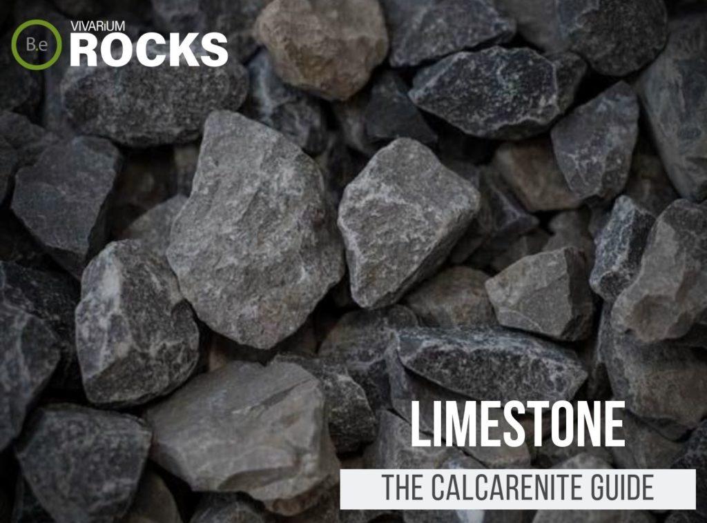 """Limestone """"Calcarenite Rock"""" Hardscape Guide"""