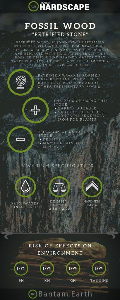 """Petrified Stone """"Fossil Wood"""" Aquascape Tips"""