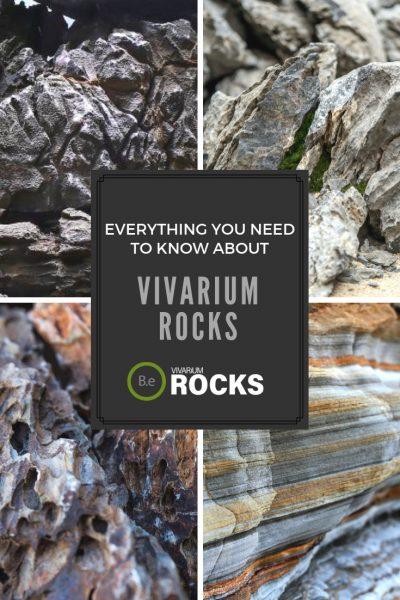 The vivarium rock guide