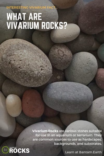 What are vivarium rocks?