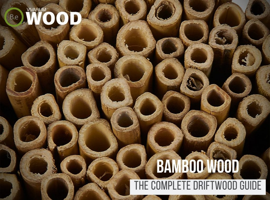 Bamboo Wood (Stakes, Poles & Hides) - The Hardscape Guide