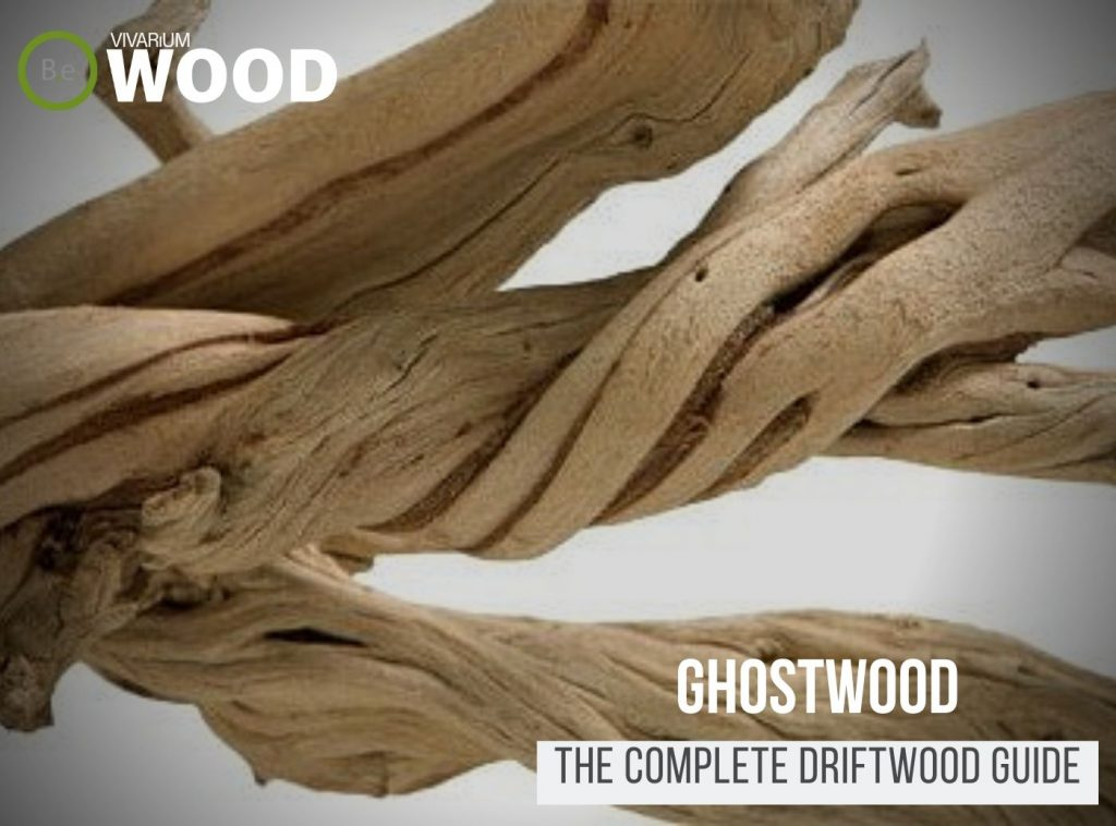 """California Driftwood """"Ghostwood"""" - The Hardscape Guide"""