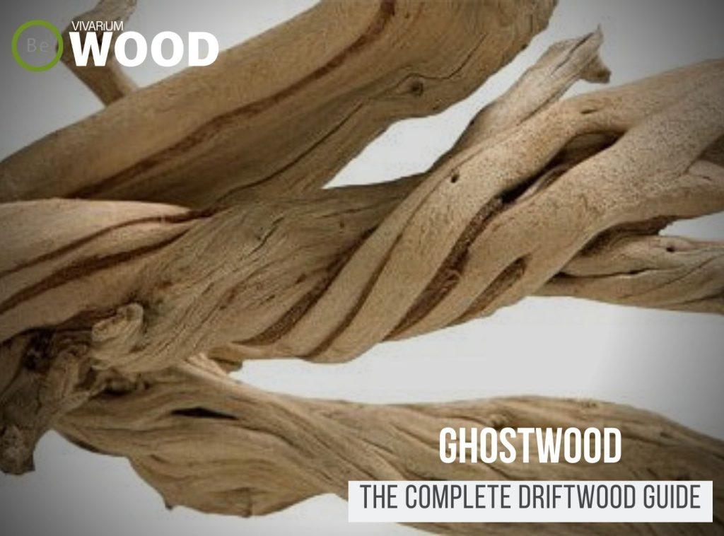 California Driftwood