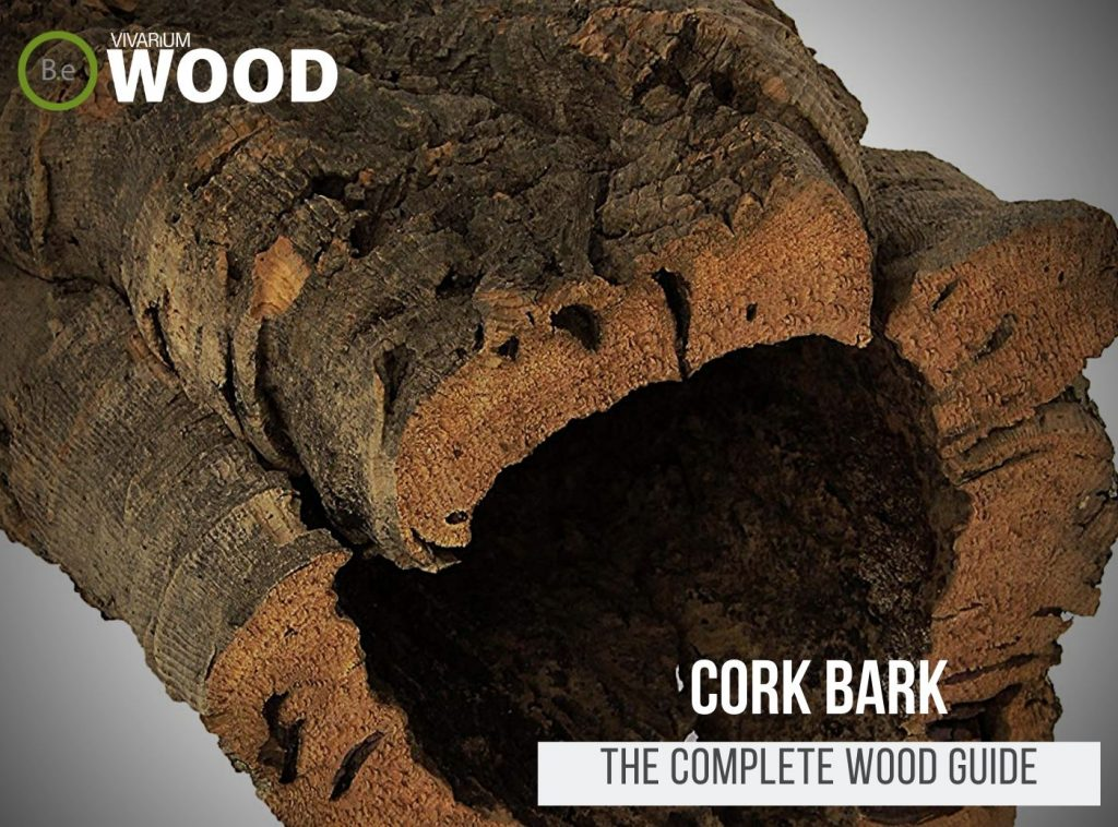 Cork Bark (Rounds, Flats & Hides) - The Hardscape Guide