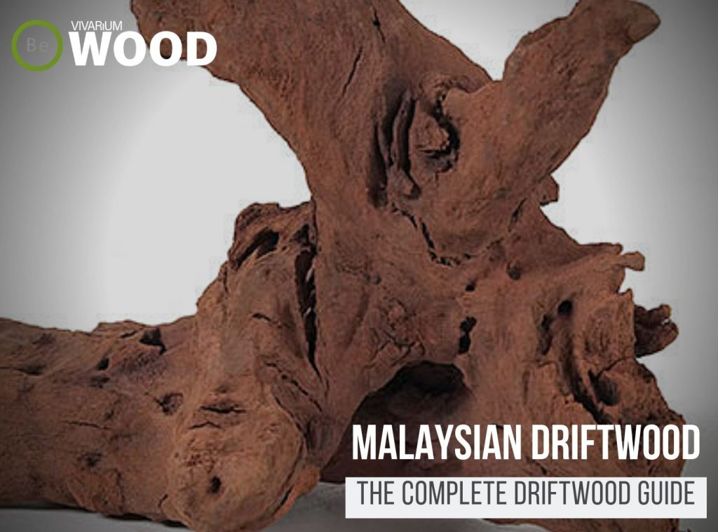 "Malaysian Driftwood ""Blackwood"" - The Hardscape Guide"