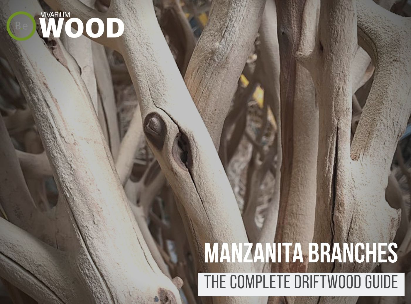 Manzanita Wood - The Driftwood Guide