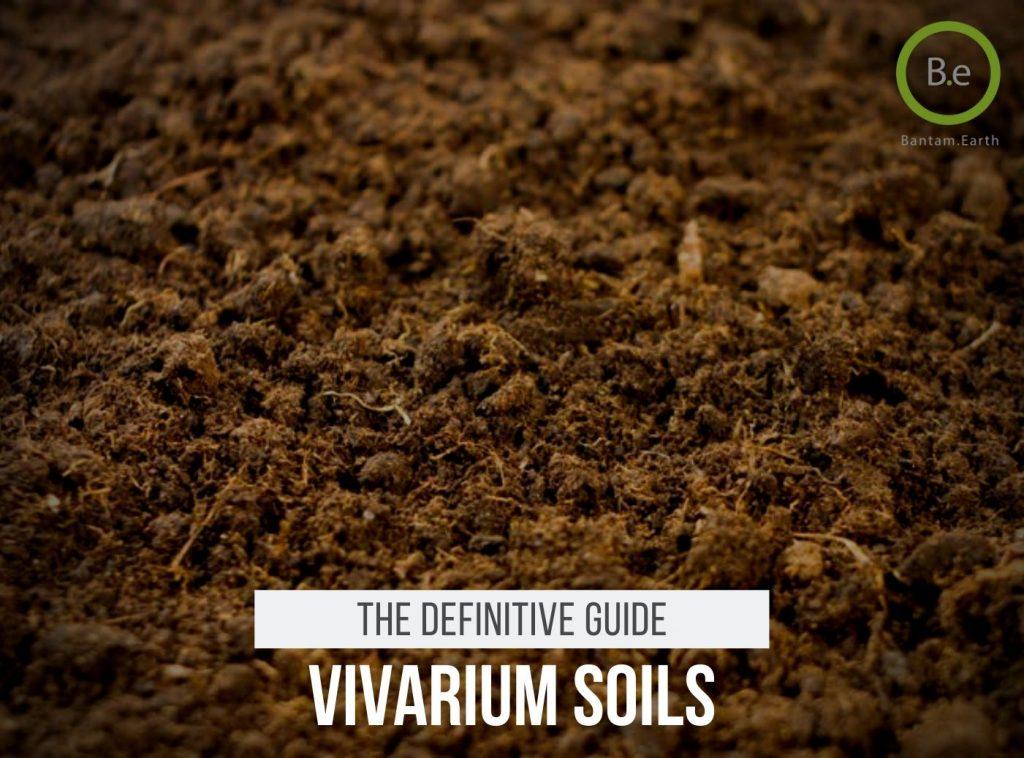 Vivarium Substrate Soil Guide