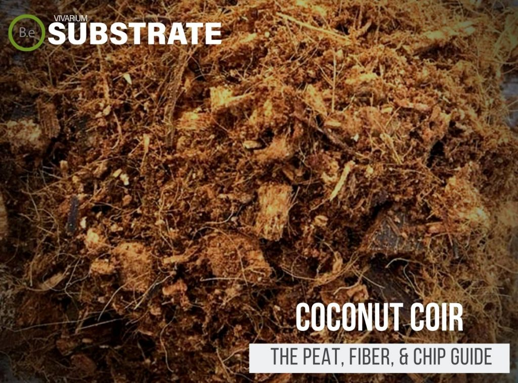 Coconut Coir (Peat, Fiber, & Chip) Substrate Guide