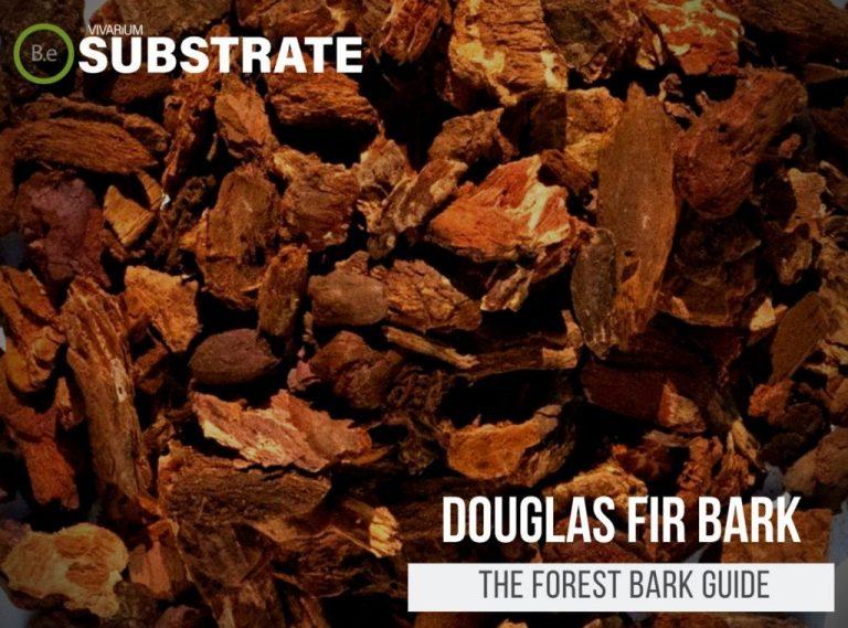 "Douglas Fir Bark ""Forest Bark"" Substrate Guide"