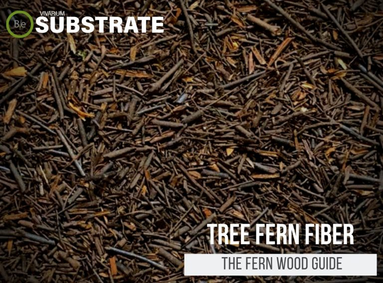 Tree Fern Fiber (Peat & Panel) Substrate Guide