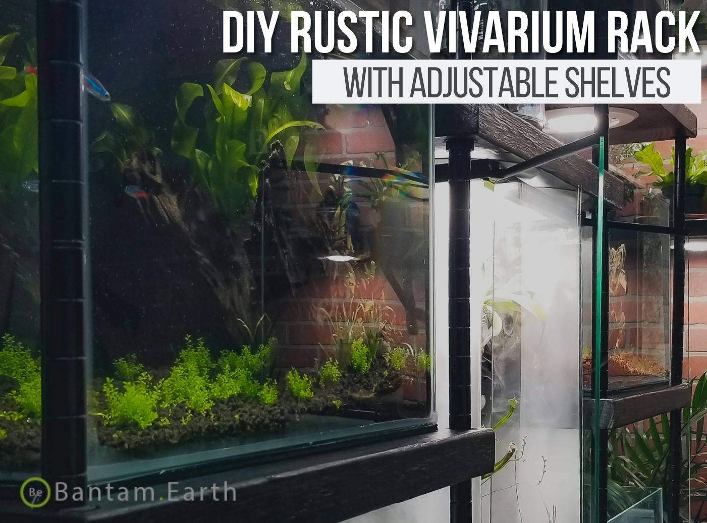DIY Vivarium Rack For Terrariums and Aquariums