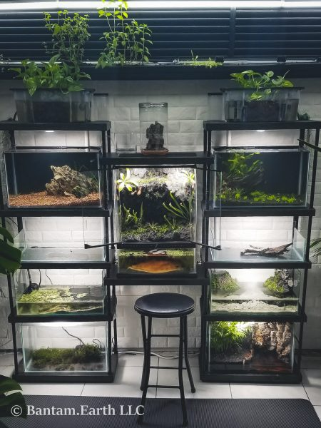 DIY Vivarium Rack