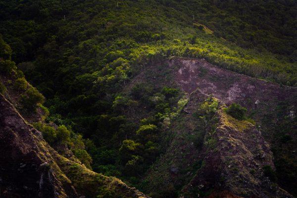 Jungle Mountain