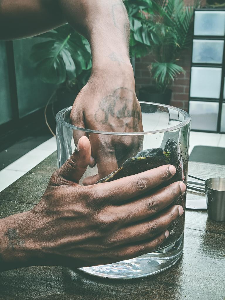 Make a moss terrarium