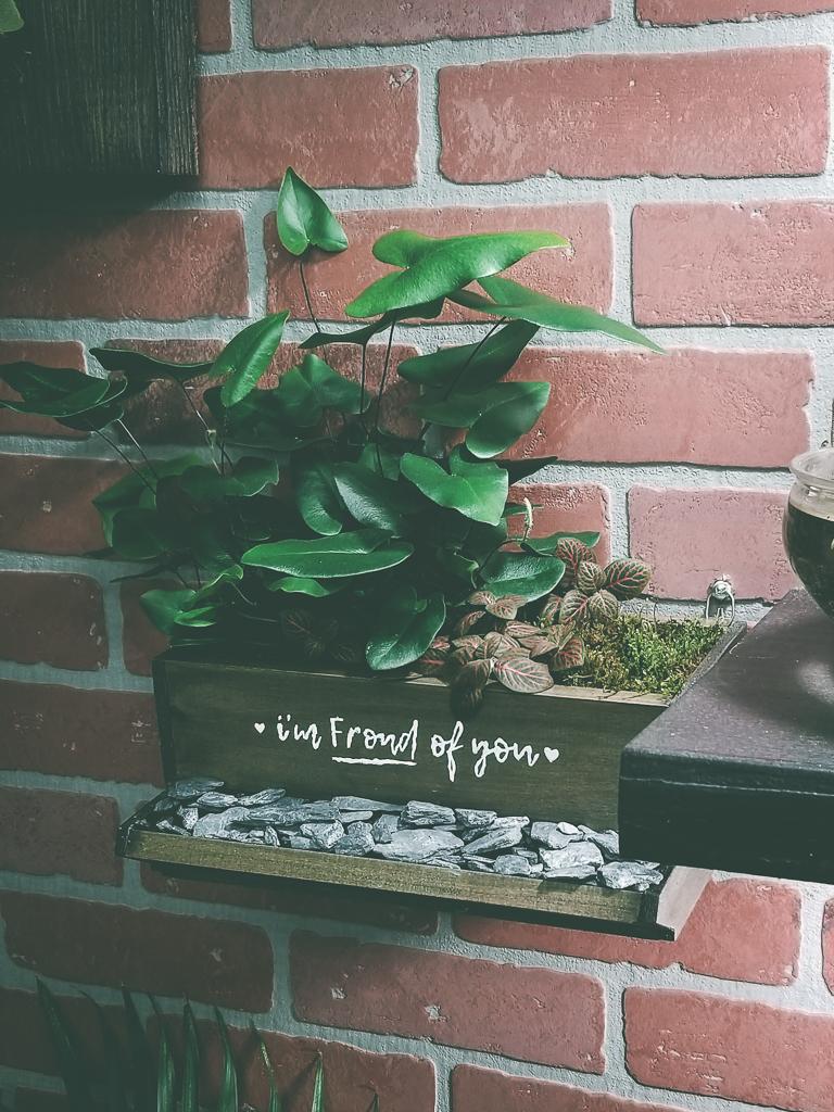 Make A Planter Box