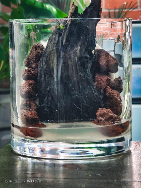 Hardscaping a mini aquascape