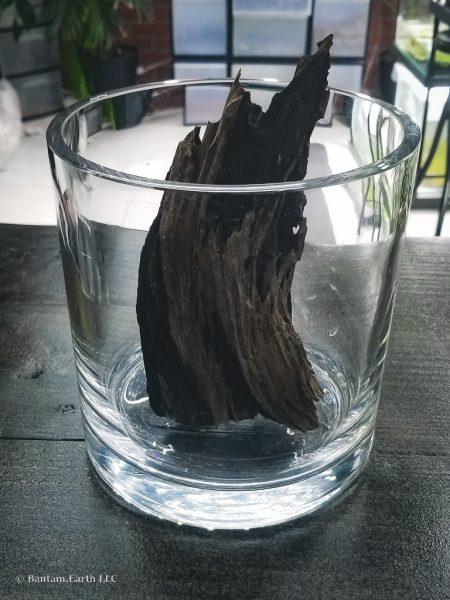 Driftwood in a mini aquascape
