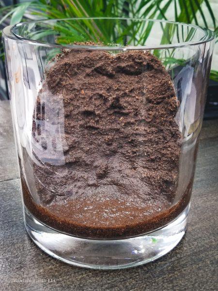 Coconut coir in terrarium