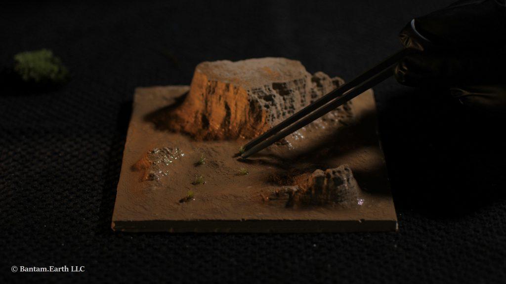 Adding Plants To Mini Desert Terrarium