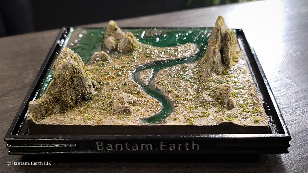 Mini Wetlands Terrarium