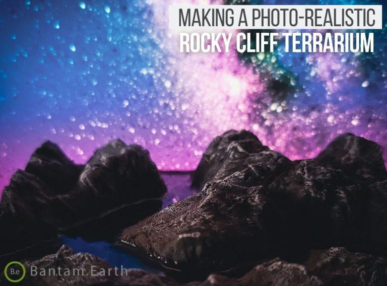 Making A Photo-Realistic Mini Rocky Cliff Terrarium